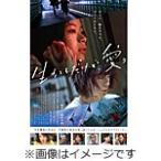 生きてるだけで、愛。通常版【DVD】/趣里/菅田将暉[DVD]【返品種別A】画像