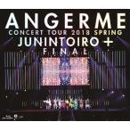 コンサートツアー2018春十人十色+ファイナル/アンジュルム[Blu-ray]【返品種別A】