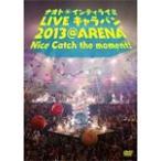 (通常盤)LIVE キャラバン 2013 @ A(DVD・音楽)