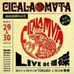 CICALA-MVTA����20��ǯ��ǰ LIVE at ����/��������[CD]�����'���A��