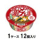 日清のあっさりおだしがおいしいどん兵衛 5種の具材が入った揚げ玉そば 70g(1ケース12個入) 日清食品 返品種別B