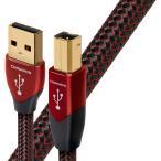 audioquest USB2 CIN 1.5M
