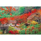 ビバリー 日本風景(秋) 伊万里の秋(佐賀) 1000ピースジグソーパズル 返品種別B