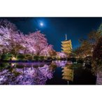 やのまん KAGAYA 月夜に咲く(京都) 1000ピース 光るパズルジグソーパズル 返品種別B