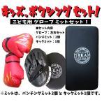 子供用 グローブ キック ミット 4点 セット キッズ パンチング ボクシング ボクササイズ トレーニング 室内 インドア