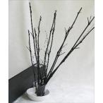 竹炭 枝竹 10本入り/お部屋のインテリアにもなる竹炭で消臭・除湿