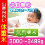 出産内祝い米 無農薬米 体重米 3000g-3499g/送料無料・名入れ メッセージカード付き