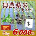 無農薬米 コシヒカリ 無洗米 5kg(1kg×5袋)/アイガモ米 自然栽培米 新潟米 エコ包装