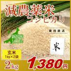 お米 2kg(1kg×2袋) 玄米 コシヒカリ 新潟県産 減農薬米 岩船産 こしひかり 令和元年産
