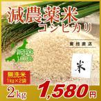 お米 2kg(1kg×2袋) 無洗米 コシヒカリ 新潟県産 減農薬米 岩船産 こしひかり 令和元年産
