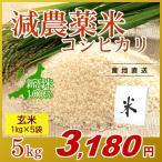 お米 5kg(1kg×5袋) 玄米 コシヒカリ 新潟県産 減農薬米 岩船産 こしひかり 令和元年産