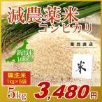 お米 5kg(1kg×5袋) 無洗米 コシヒカリ 新潟県産 減農薬米 岩船産 こしひかり 令和元年産