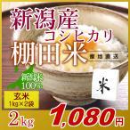 米 2kg(1kg×2袋) 玄米 岩船産こしひかり 新潟米 コシヒカリ 小袋 令和2年産