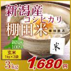 米 3kg(1kg×3袋) 玄米 岩船産こしひかり 新潟米 コシヒカリ 小袋 令和元年産