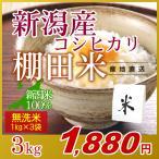 米 3kg(1kg×3袋) 無洗米 岩船産こしひかり 新潟米 コシヒカリ 小袋 令和元年産