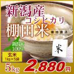 米 5kg(1kg×5袋) 玄米 岩船産こしひかり 新潟米 コシヒカリ 小袋 令和元年産