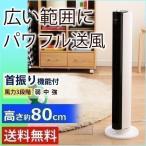 扇風機 タワー型 メカ式 タワーファン おしゃれ リビング 寝室 首振り タワー型 TWF-D81 アイリスオーヤマ (あすつく)
