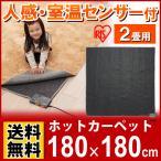(在庫処分)\数量限定/ 人感・室温センサー付ホットカーペット2畳用 JSHC-2H アイリスオーヤマ