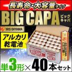 アルカリ乾電池 BIG CAPA 長寿命・大容量タイプ 単3形40本セット アイリスオーヤマ