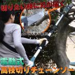 電動高枝切りチェンソー ガーデニング 枝 庭 木 「高枝健太郎くん」 ET1208 SIS