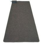 ホットカーペット 1畳 本体 長方形 カーペット 電気カーペット 一人用 ホットマット ダニ退治 折り畳み HC-IR100 TEKNOS:予約品