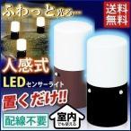 人感センサーライト 屋外 屋内 LED 照明 スリム 足元灯 LSL-MS1 アイリスオーヤマ 人気