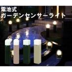 (在庫処分)センサーライト 電池式ガーデンセンサーライト 人感センサー 防犯灯 防犯ライト ZSL-MT・ ZSL-KT 人気