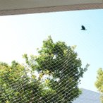 防鳥ネット 4×10m  透明 鳥よけ カラスよけ 鳩よけ ベランダ 害獣 対策グッズ 送料無料 ポイント消化 SxP