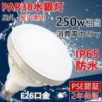 PAR38 バラストレス水銀灯 250W相当ライト E26口金 IP65 防水 LEDスポットライト LED電球 看板灯  防犯灯 街路灯 水銀灯からLEDへ交換 天井照明