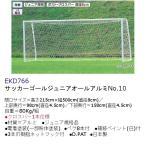 エバニュー 学校 体育 公園 サッカーゴールジュニアオールアルミNo.10 受注生産品 EKD766 <2019CON>