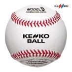 ナガセケンコー 硬式野球練習球 (MODEL9 KSR) 10ダース マシンに適したケプラー糸モデル MODEL9KSR <2021CON>