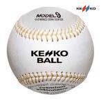 ナガセケンコー 硬式野球練習球 (MODEL9 KSY) 10ダース マシンに適したケプラー糸モデル MODEL9KSY <2021CON>