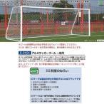 三和体育 アルミサッカーゴール 一般用 S-0104 <2019CON>
