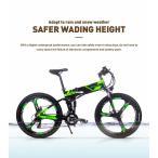 RICHBIT TOP860 ハイブリッドマウンテンバイク 次世代型スポーツタイプ 電動アシスト自転車 3色(グリーン)