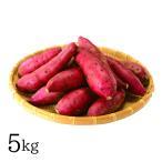 九州 ギフト 2020 ふるさと駅 奇跡のからいも 紅はるか 5kg  S〜2Lサイズ  熊本県産さつまいも  常温