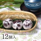九州 ギフト 2019 虎屋  破れ饅頭 12個入 つぶ餡が美味しい 宮崎延岡名物 やぶれまんじゅう 常温