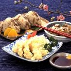 九州 ギフト 2021 デリカフーズ大塚 豊後とり天 鶏めしの素 ポン酢セット 大  大分県郷土料理  冷凍