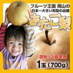【予約】あたご梨ご自宅用 1玉(700g前後)