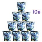ヨーグルト 蒜山ジャージーヨーグルトブルーベリー果汁 10個セット