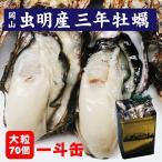 岡山産 3年もの 殻付き牡蠣一斗缶 大粒 約70個 人気 ありがとうギフト