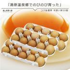 平飼い卵30個入