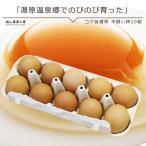 平飼い卵10個入 岡山県湯原温泉郷 味濃いたまご