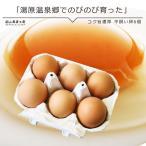 平飼い卵6個入 岡山県湯原温泉郷 味濃いたまご