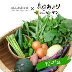 野菜セット 真庭あぐり野菜セット 10〜11品