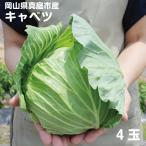 岡山県真庭産キャベツ 4玉 4kg前後 単品野菜 西日本