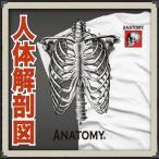 ショッピングTシャツ おもしろTシャツ メンズ 面白 パロディ ジョーク 人体解剖 おもしろTシャツ