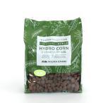 ハイドロコーン 大粒 2L 観葉植物/ハイドロカルチャー/水耕栽培/インテリアグリーン