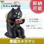 置物 オブジェ かわいいデコレ コンコンブル ( decole concombre )旅猫 黒猫カメラマン