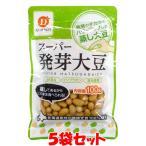 蒸し大豆 スーパー発芽大豆 だいずデイズ 100g×5個セット メール便送料無料