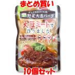 三育 デミグラスソース風 野菜大豆バーグ 100g×10個セット まとめ買い